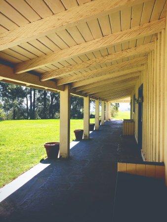 Leigh Tran - patio